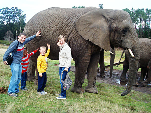 family_elephant copy
